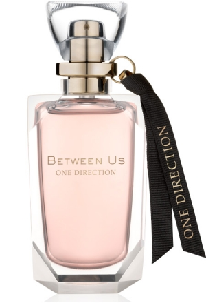 One Direction Between Us