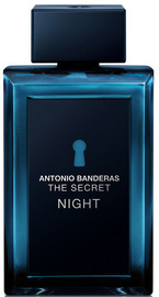 Banderas The Secret Night