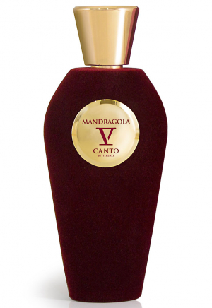 V Canto Red Collection Mandragola