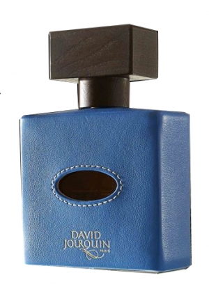 David Jourquin Cuir Caraibes парфюмированная вода 100мл (Давид Жорквин Карибская Кожа)