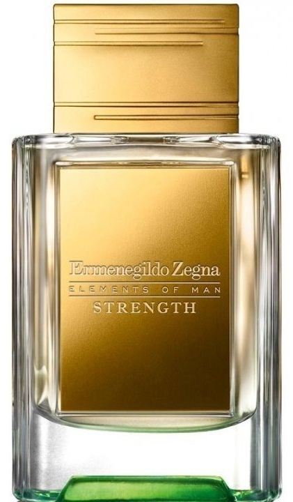 Ermenegildo Zegna Elements of Man Strength