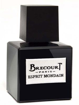Brecourt Esprit Mondain парфюмированная вода 50мл ()
