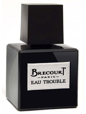 Brecourt Eau Trouble парфюмированная вода 50мл (Бреко Неспокойная Вода)